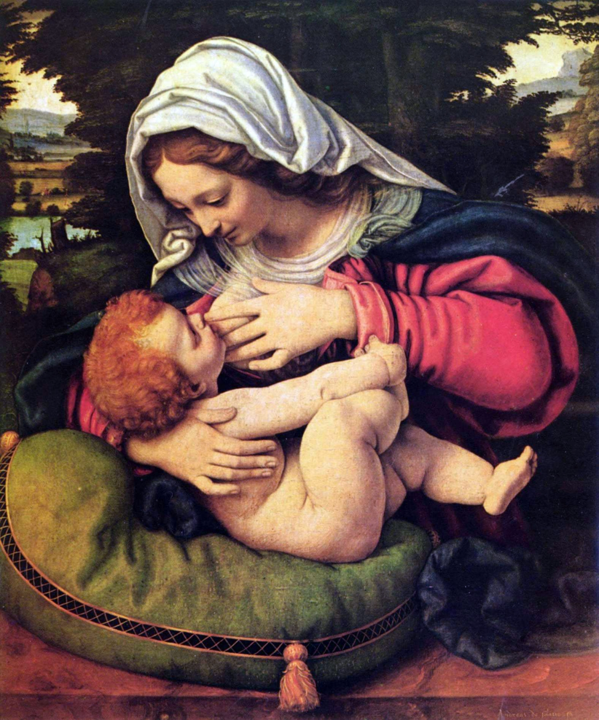 La vierge au coussin vert tableau peint par Andrea Solari
